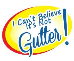 Can't Believe Gutter