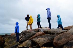 Group Rocks